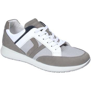 Pantofi Bărbați Pantofi sport Casual IgI&CO 3125411 Gri
