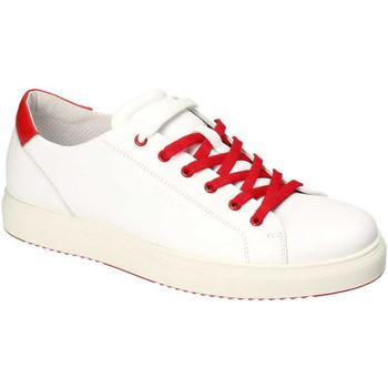 Pantofi Bărbați Pantofi sport Casual IgI&CO 3132700 Alb