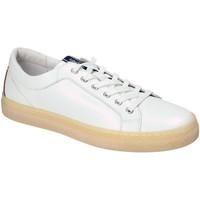 Pantofi Bărbați Pantofi sport Casual IgI&CO 3134500 Alb
