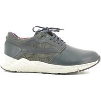 Pantofi Bărbați Pantofi sport Casual Alberto Guardiani SU73452D Albastru