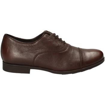 Pantofi Bărbați Pantofi Derby Geox U641XB 00085 Maro