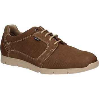 Pantofi Bărbați Pantofi Derby Baerchi 5080 Maro