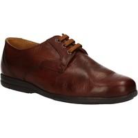 Pantofi Bărbați Pantofi Derby Fontana 5685-VI Maro