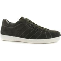 Pantofi Bărbați Pantofi sport Casual Stonefly 108541 Verde