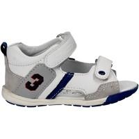 Pantofi Copii Sandale  Chicco 01057445 Alb