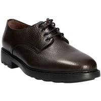 Pantofi Bărbați Pantofi Derby Maritan G 111333 Maro