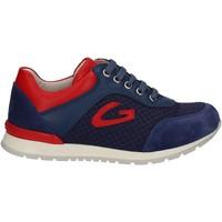Pantofi Copii Pantofi sport Casual Alberto Guardiani GK23301 Albastru