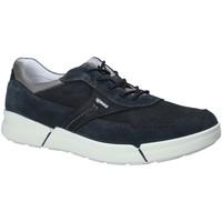Pantofi Bărbați Pantofi sport Casual IgI&CO 1126 Albastru