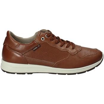 Pantofi Bărbați Pantofi sport Casual Enval 1211422 Maro
