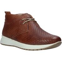 Pantofi Bărbați Pantofi sport stil gheata IgI&CO 1120 Maro