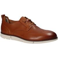 Pantofi Bărbați Pantofi Derby Clarks 123748 Maro