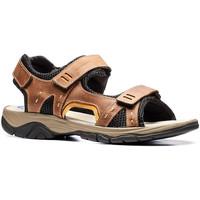 Pantofi Bărbați Sandale  Stonefly 108692 Maro