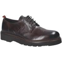 Pantofi Bărbați Pantofi Derby Exton 390 Maro