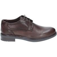 Pantofi Bărbați Pantofi Derby Rogers 2027 Maro