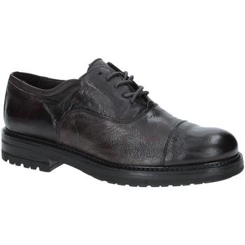 Pantofi Bărbați Pantofi Derby Exton 692 Maro