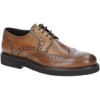 Pantofi Bărbați Pantofi Derby Exton 5446 Maro