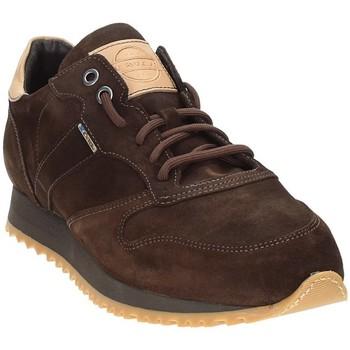 Pantofi Bărbați Pantofi sport Casual Exton 777 Maro