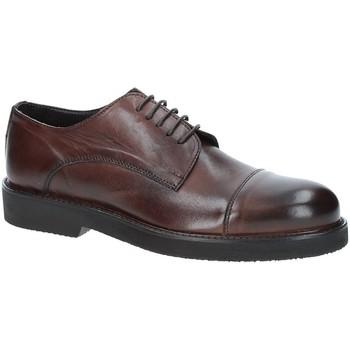 Pantofi Bărbați Pantofi Derby Exton 5413 Maro