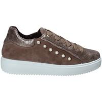Pantofi Femei Pantofi sport Casual IgI&CO 2153922 Maro