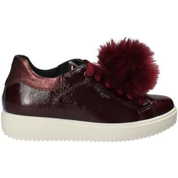 Pantofi Femei Pantofi sport Casual IgI&CO 2154844 Roșu