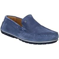 Pantofi Bărbați Mocasini Rogers 701 Albastru