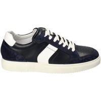 Pantofi Bărbați Pantofi sport Casual IgI&CO 3132900 Albastru
