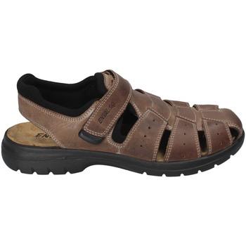 Pantofi Bărbați Sandale  Enval 3247522 Maro