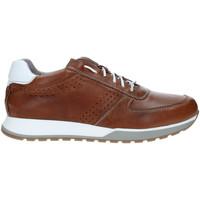 Pantofi Bărbați Pantofi sport Casual Rogers 5065 Maro