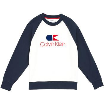 Îmbracaminte Bărbați Hanorace  Calvin Klein Jeans K10K103940 Albastru