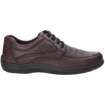 Pantofi Bărbați Pantofi sport Casual Enval 4233511 Maro