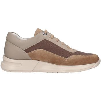 Pantofi Bărbați Pantofi sport Casual CallagHan 91311 Bej
