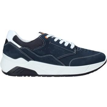 Pantofi Bărbați Pantofi sport Casual IgI&CO 5132033 Albastru