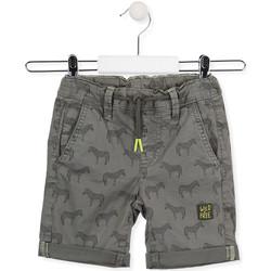 Îmbracaminte Copii Pantaloni scurti și Bermuda Losan 015-9006AL Verde