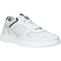 Pantofi Bărbați Pantofi sport Casual Impronte IM01024A Alb