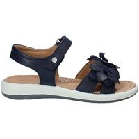 Pantofi Copii Sandale  Naturino 0502549-02-0C02 Albastru
