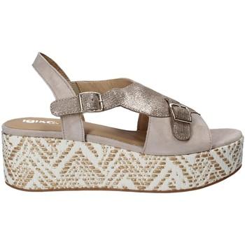 Pantofi Femei Sandale  IgI&CO 1188 Gri
