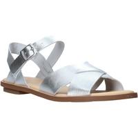 Pantofi Femei Sandale  Clarks 26139429 Argint