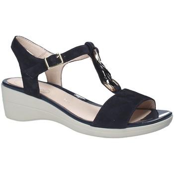 Pantofi Femei Sandale  Stonefly 110216 Albastru