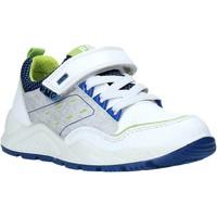 Pantofi Copii Pantofi sport Casual Primigi 5381500 Alb