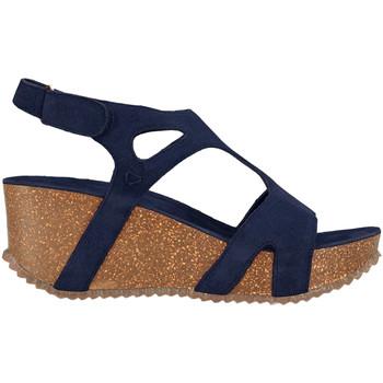 Pantofi Femei Sandale  Docksteps DSE106243 Albastru