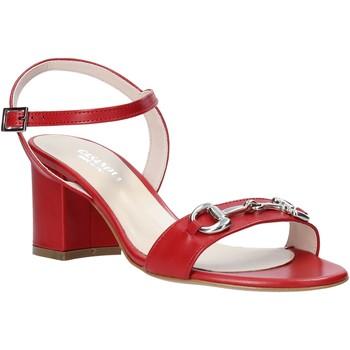 Pantofi Femei Pantofi cu toc Casanova LUNT Roșu