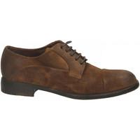 Pantofi Bărbați Pantofi Derby Brecos CAMOSCIO sigaro