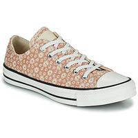 Pantofi Femei Pantofi sport Casual Converse CHUCK TAYLOR ALL STAR CANVAS BRODERIE OX Bej