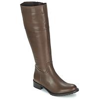 Pantofi Femei Cizme casual Betty London CAVAK Maro