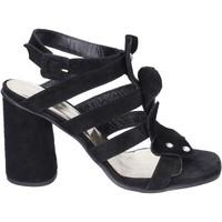 Pantofi Femei Sandale  Sergio Cimadamore Sandali Camoscio Nero