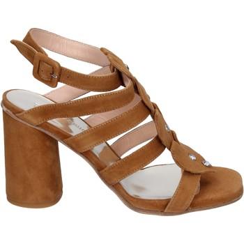 Pantofi Femei Sandale  Sergio Cimadamore Sandali Camoscio Marrone