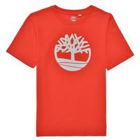 Îmbracaminte Băieți Tricouri mânecă scurtă Timberland LOLLA Roșu