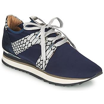 Pantofi Femei Pantofi sport Casual Adige XAN V4 KOI SILVER Albastru