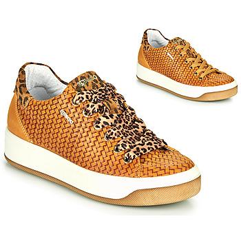 Pantofi Femei Pantofi sport Casual IgI&CO SHOUHAI Ocru