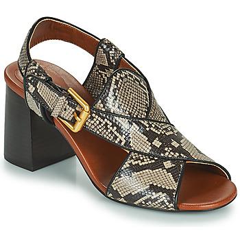 Pantofi Femei Sandale  See by Chloé HELLA Bej / Gri
